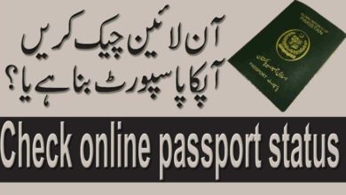 Photo of Track Pakistani Passport Status Via SMS After Shutdown Official Website